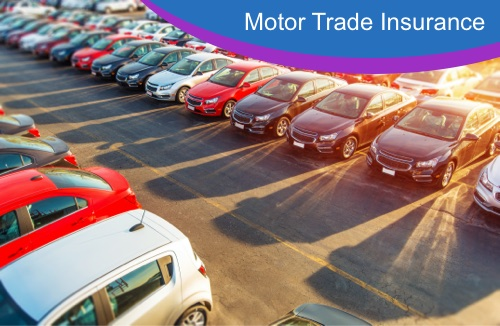 Motor Trade Insurance Cars parked in Sun